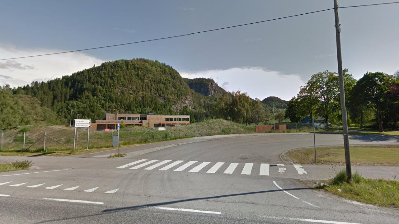 Helt hit - til Lundamo skole i Sør-Trøndelag, rekker lenka med alle som er engasjert i de 35 medlemsorganisasjonene. Foto: Skjermbilde fra Google Street Wiev.